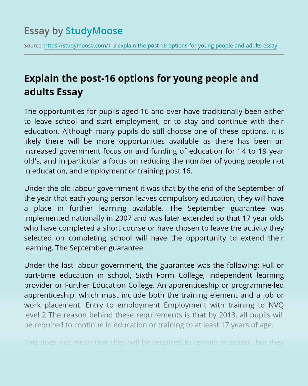 Explain the post-16 options for young people and adults