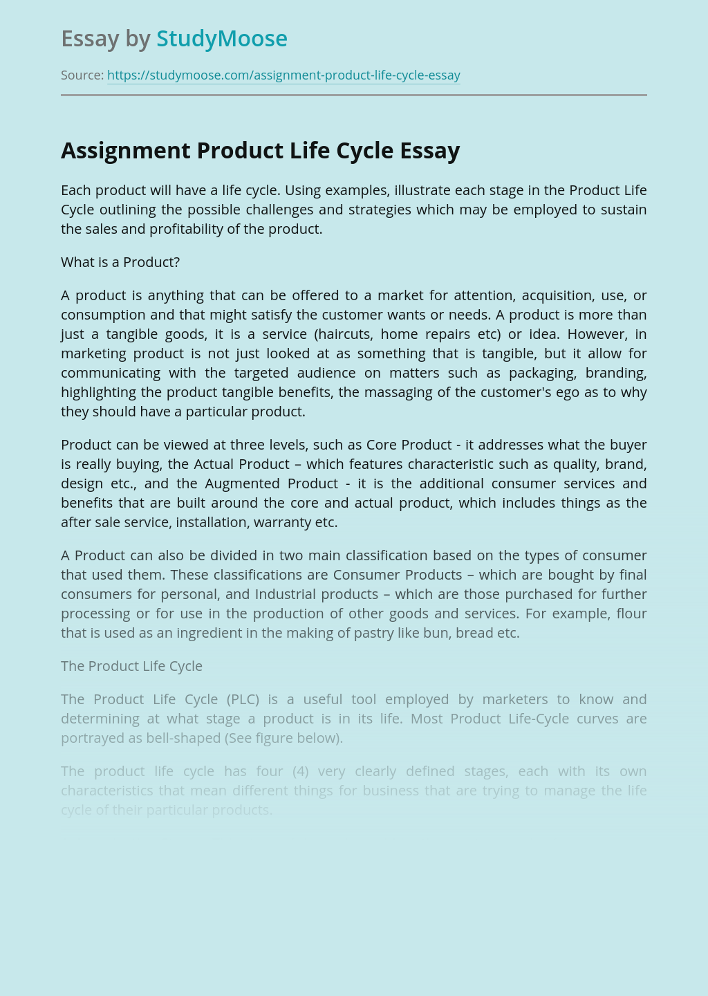 Assignment Product Life Cycle