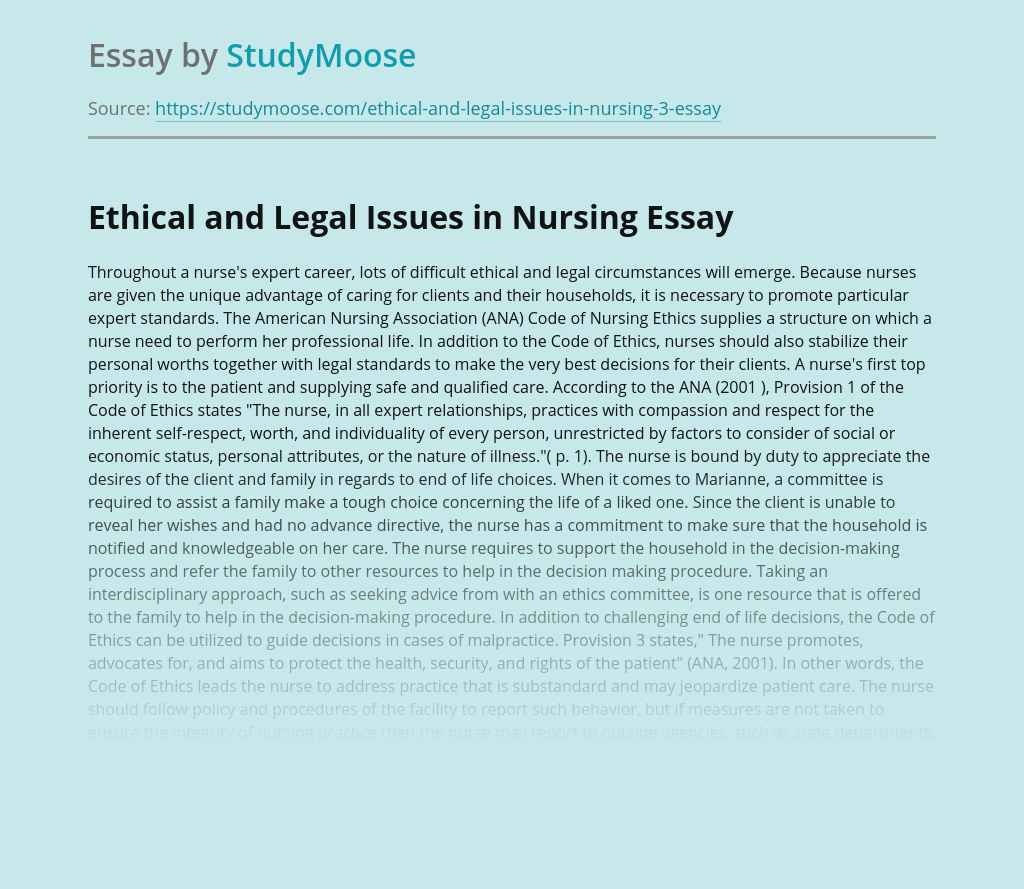 Precautions in Ethical and Legal Issues in Nursing