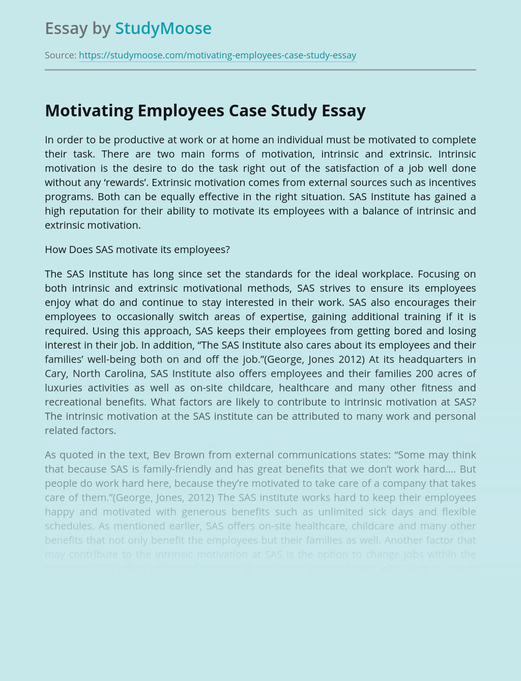 Motivating Employees Case Study