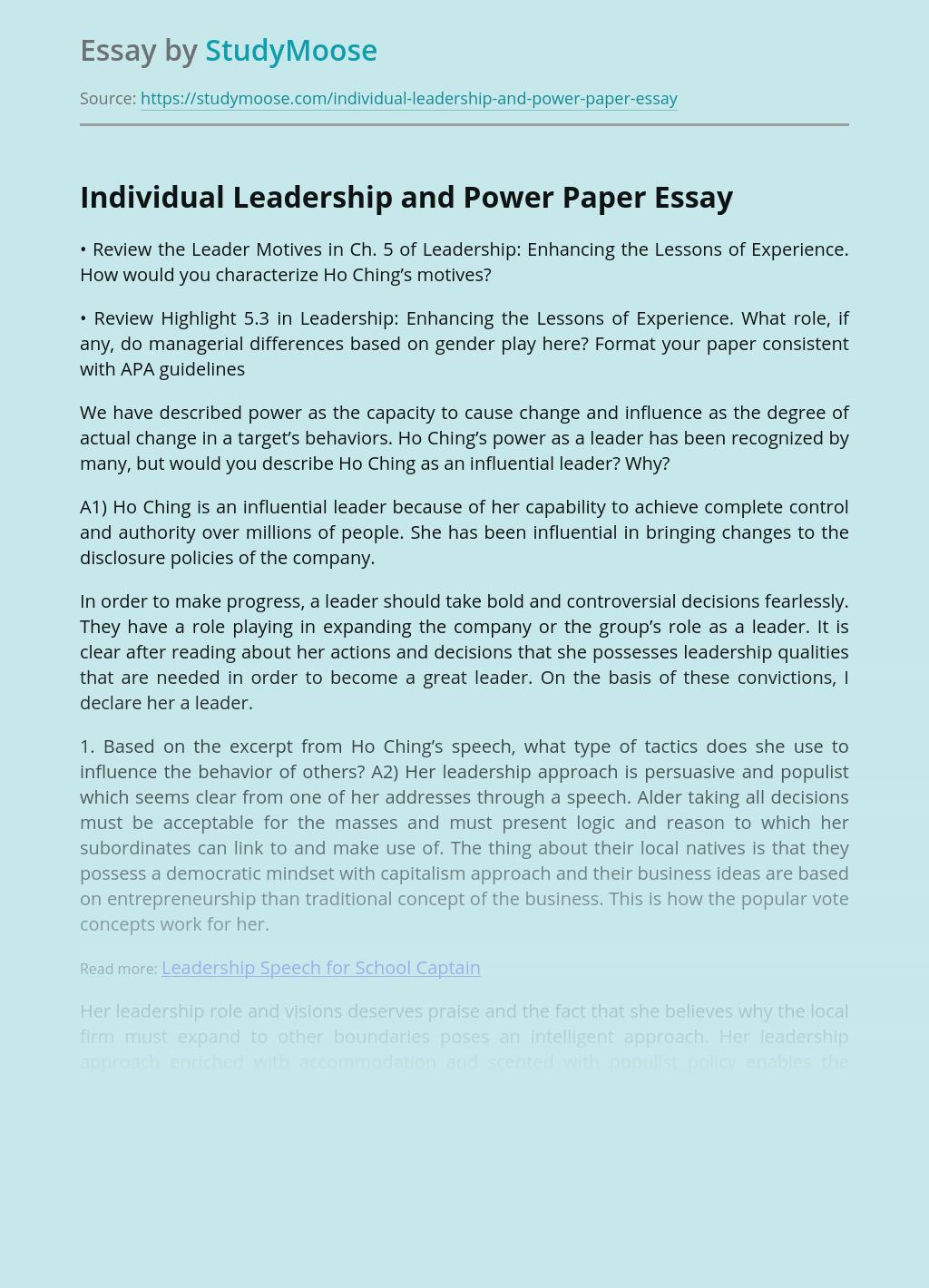Individual Leadership and Power Paper