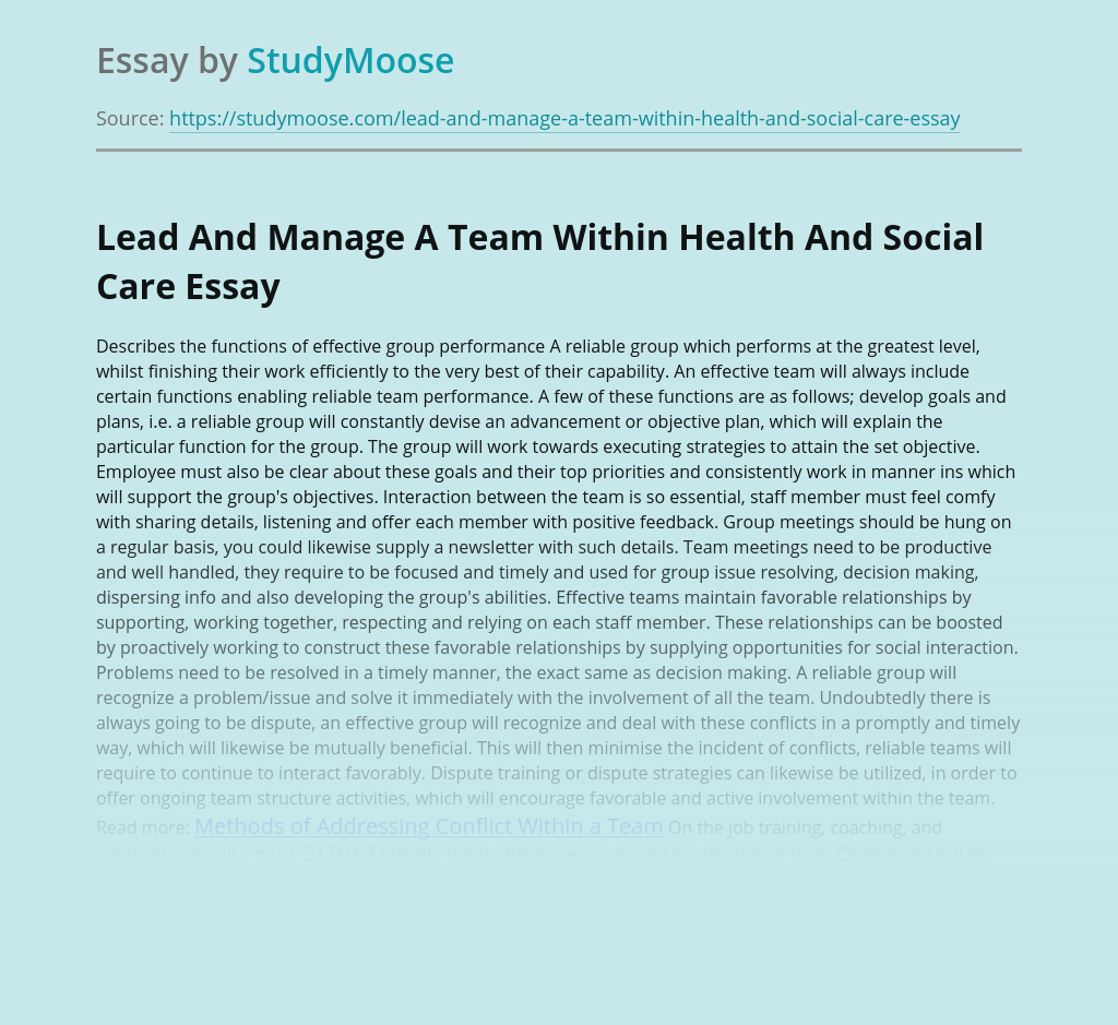 Lead And Manage A Team Within Health And Social Care