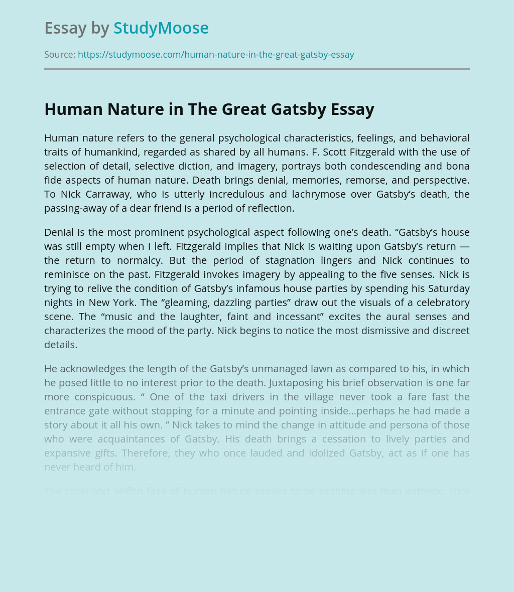 Human Nature in The Great Gatsby