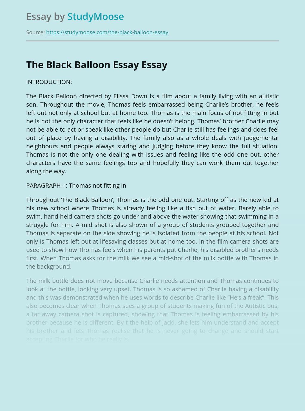 The Black Balloon Essay