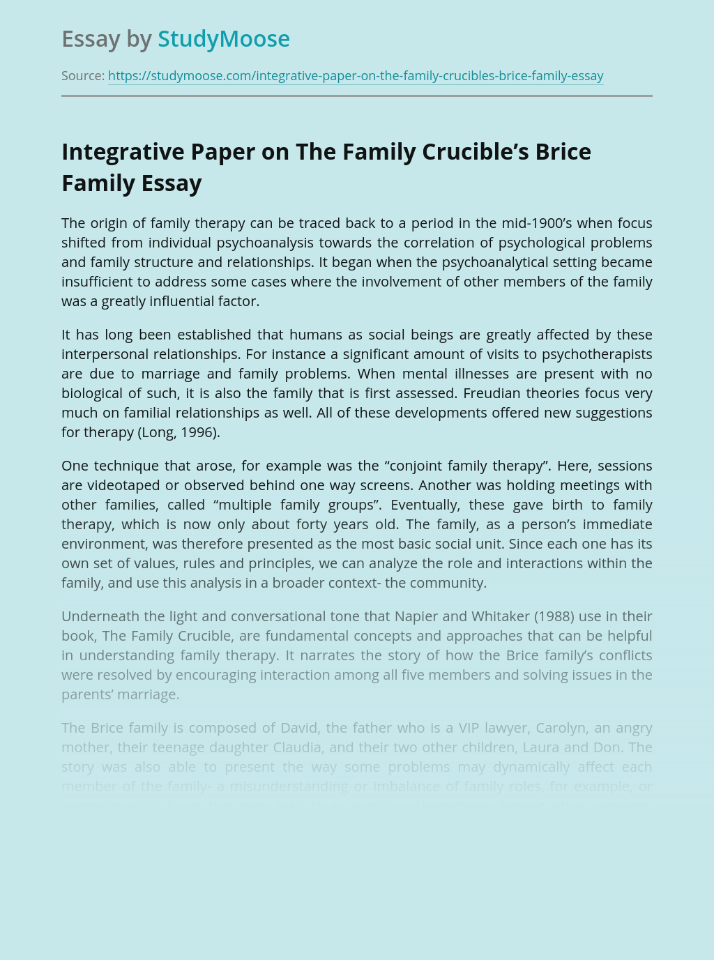 Integrative Paper on The Family Crucible's Brice Family