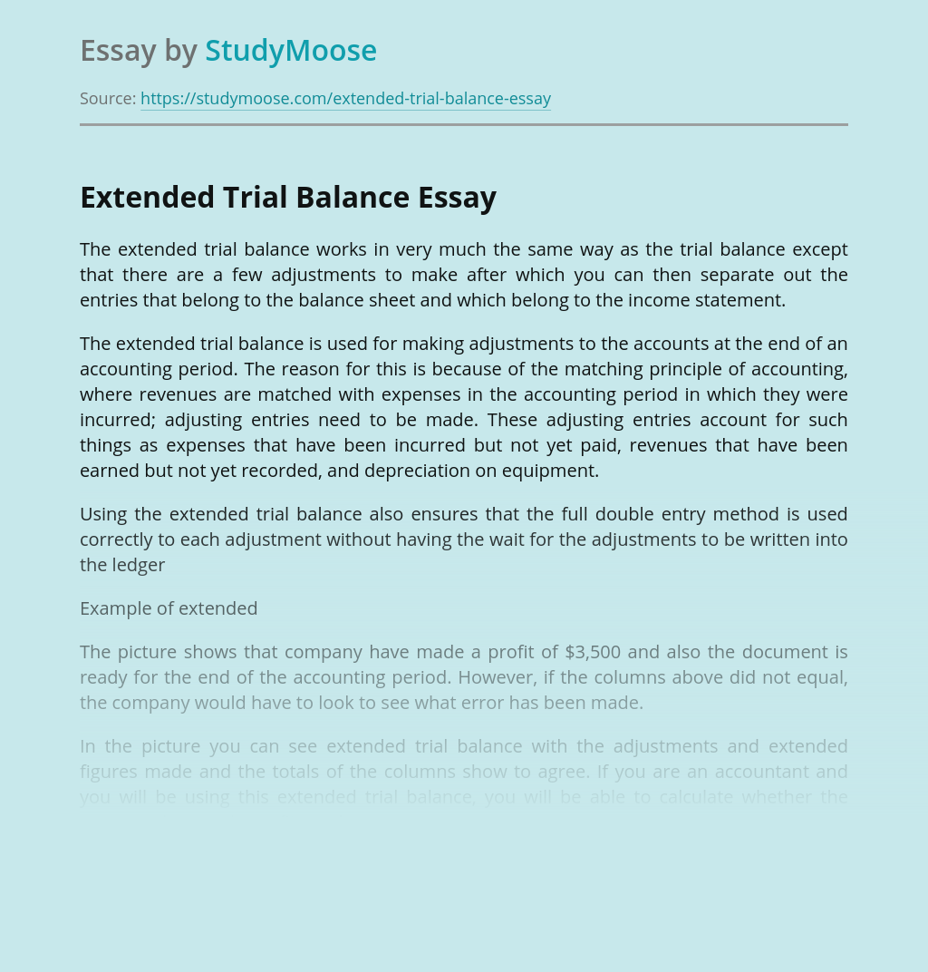 Extended Trial Balance for Business