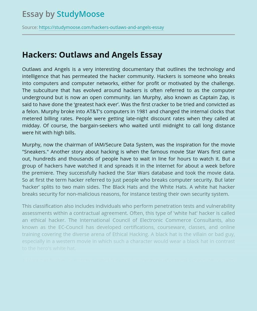 Do my professional reflective essay on hacking tourism ghostwriters services