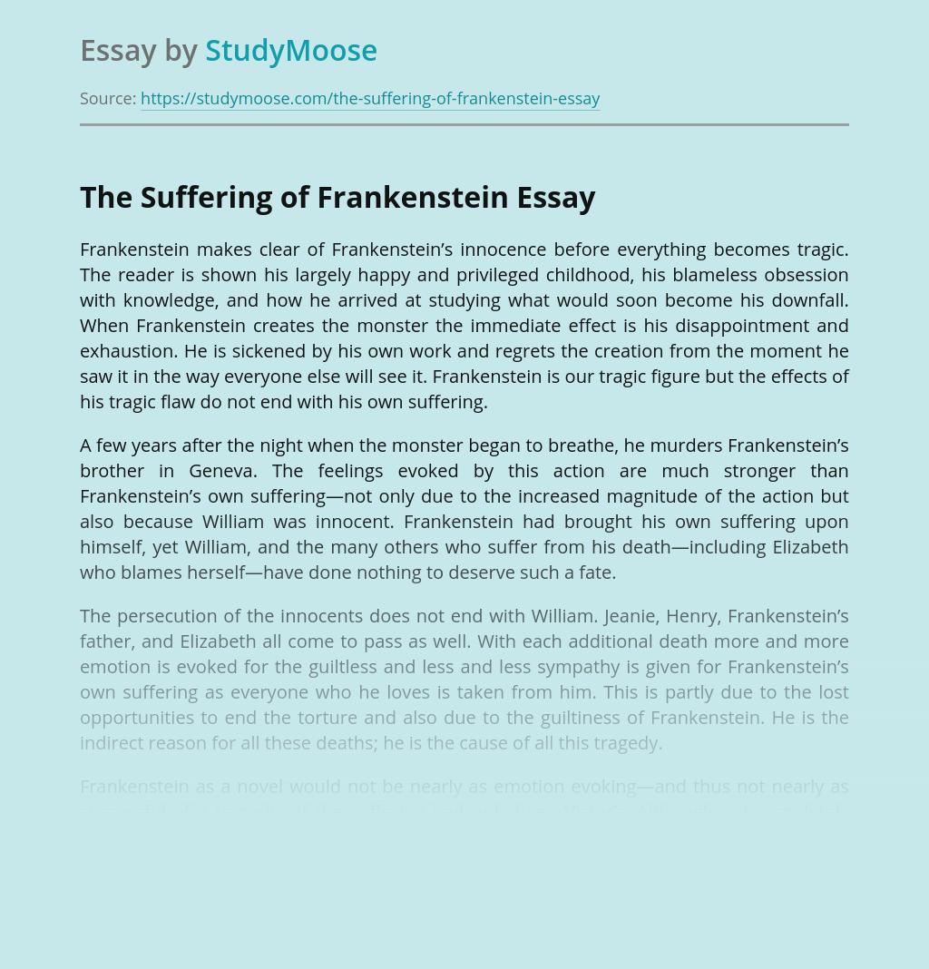 The Suffering of Frankenstein