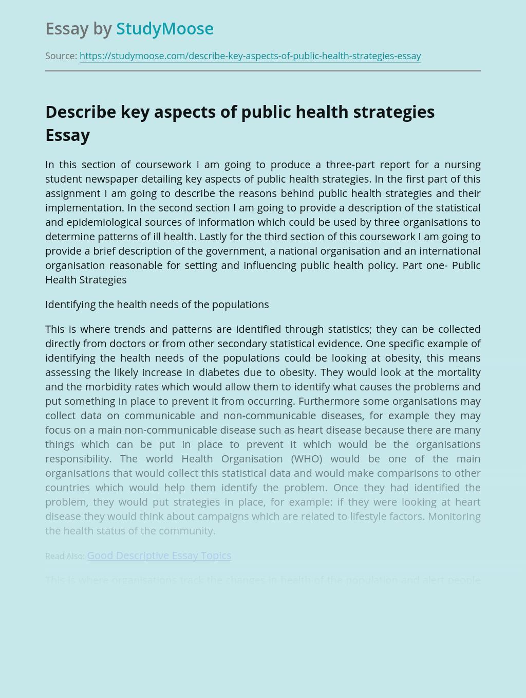 Describe key aspects of public health strategies