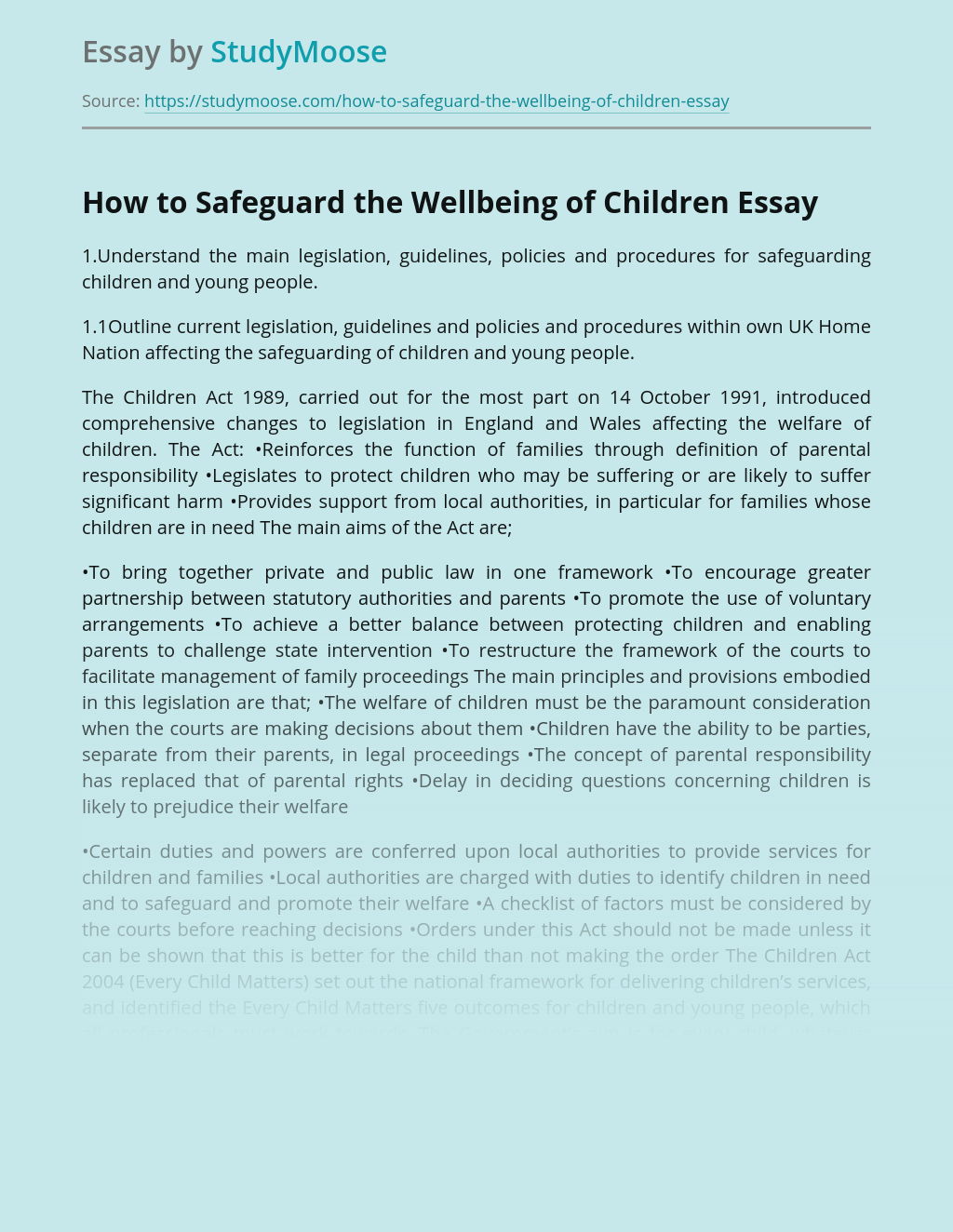 How to Safeguard the Wellbeing of Children