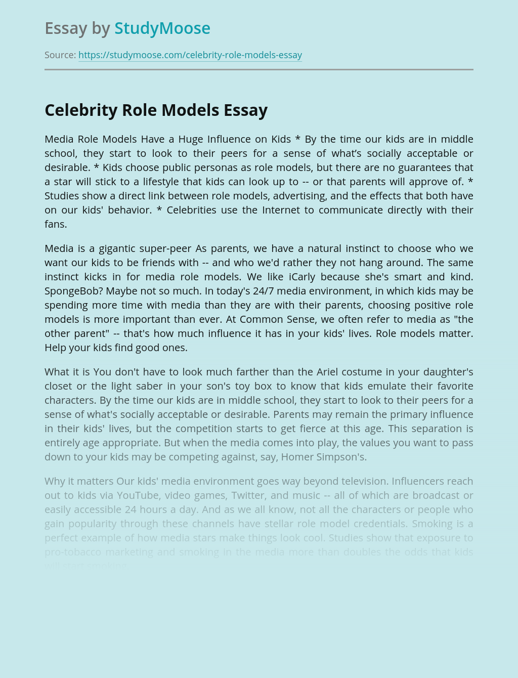 What is a role model essay