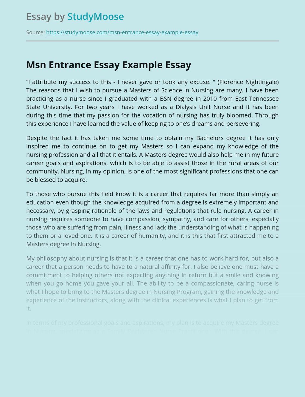 Msn Entrance Essay Example