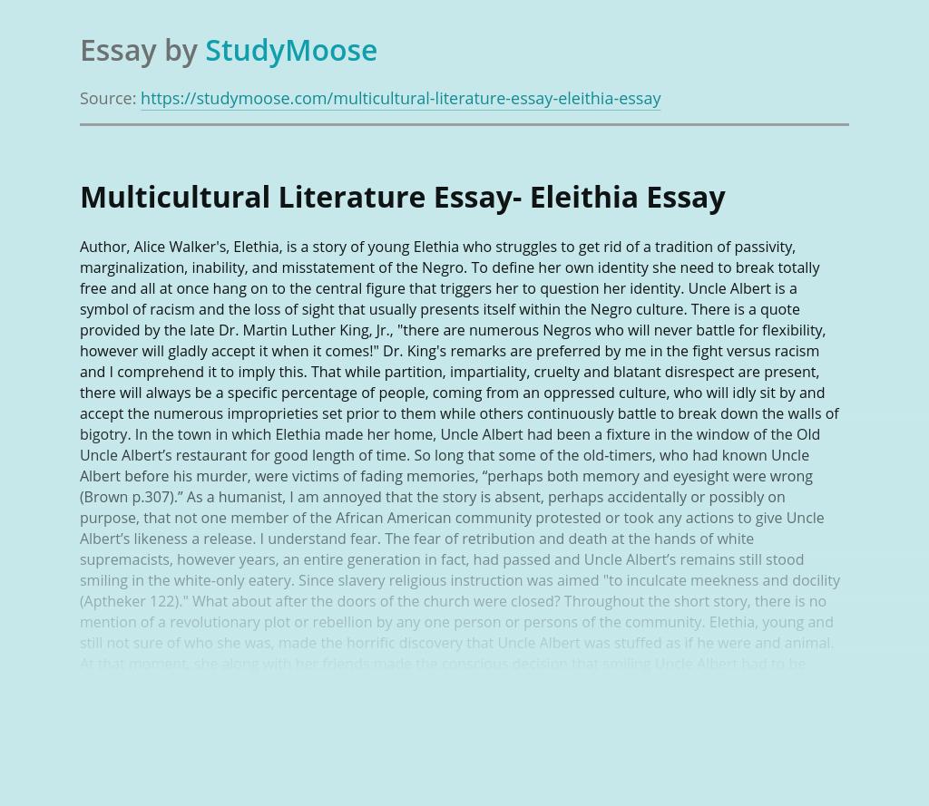 Multicultural Literature Essay- Eleithia