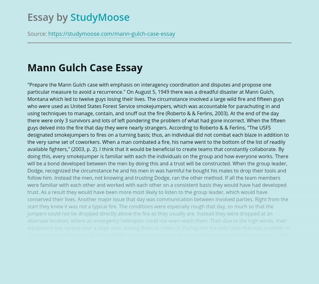 Mann Gulch Case Analysis