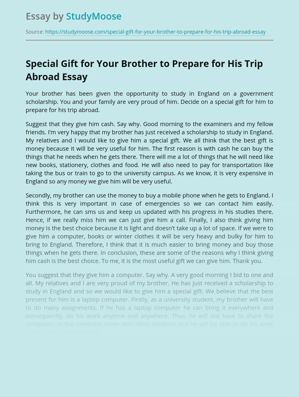 Special Gift for Your Brother to Prepare for His Trip Abroad