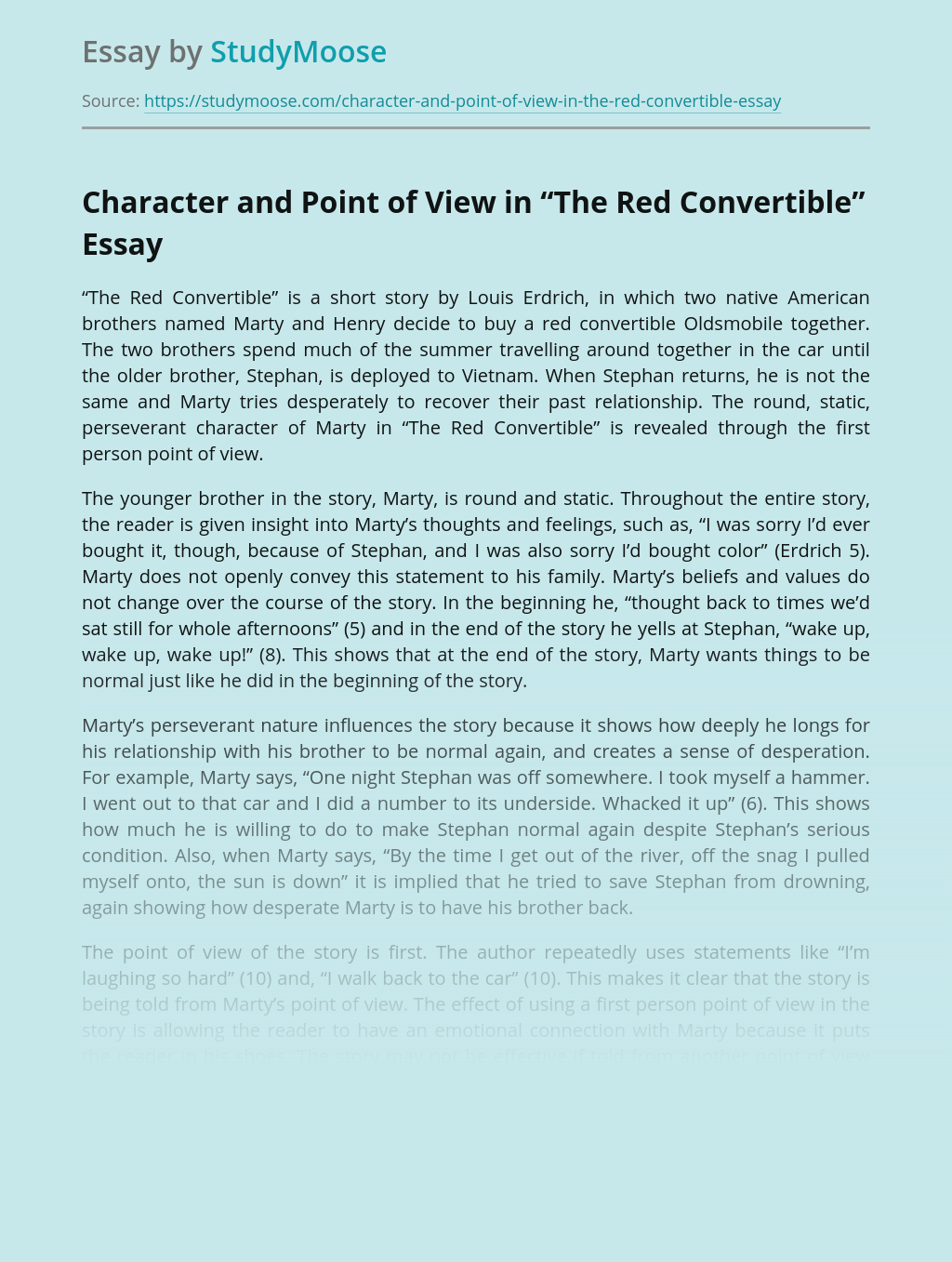 """Character and Point of View in """"The Red Convertible"""""""