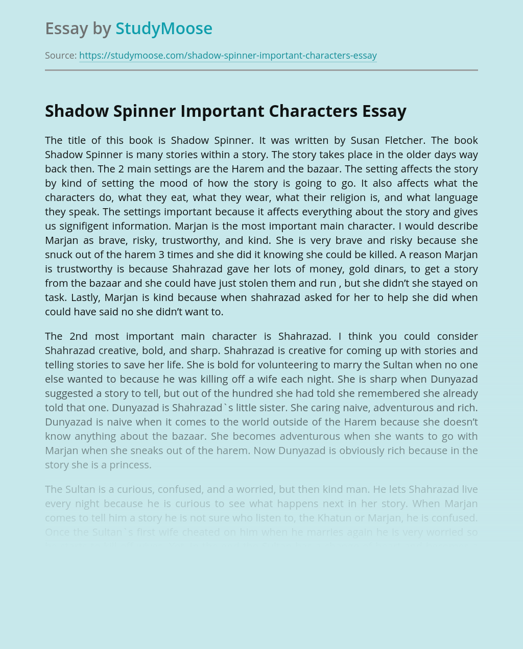 Shadow Spinner Important Characters