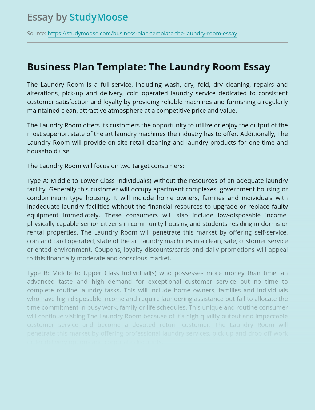 Business Plan Template: The Laundry Room