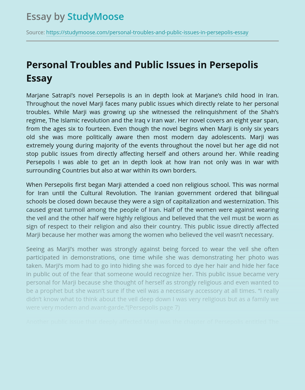 Personal Troubles And Public Issues In Persepolis Free Essay Example
