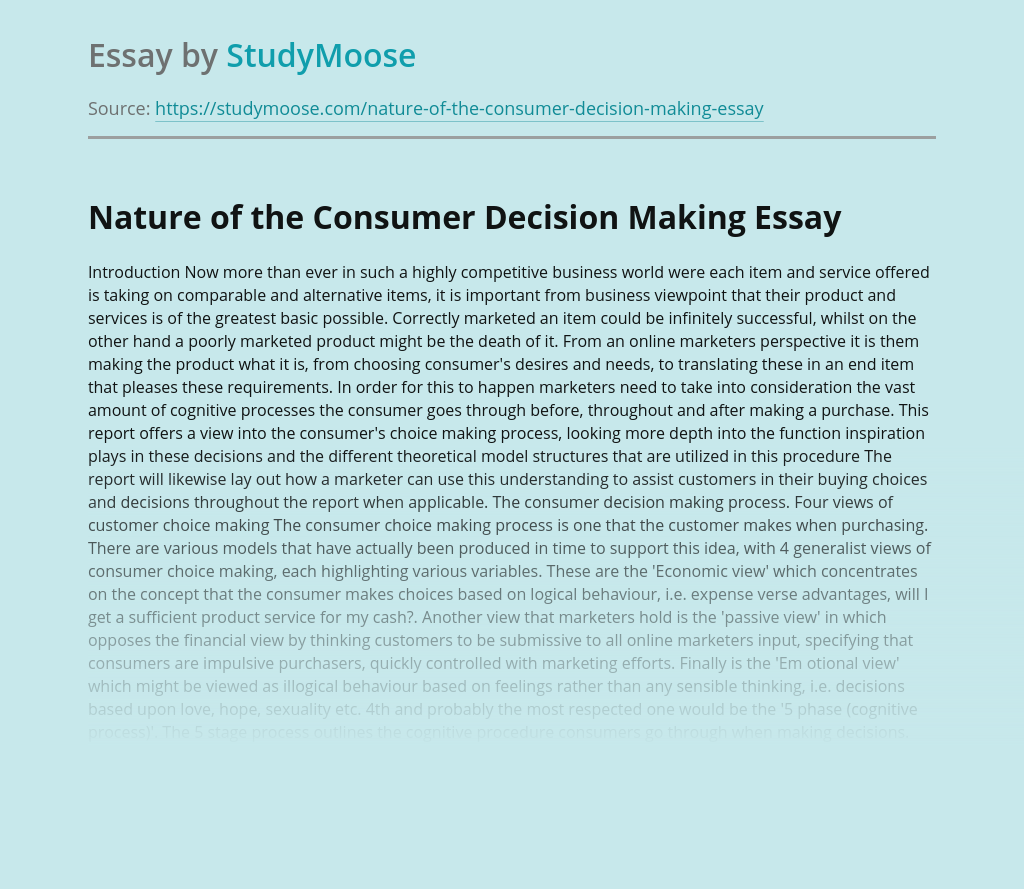 Nature of the Consumer Decision Making