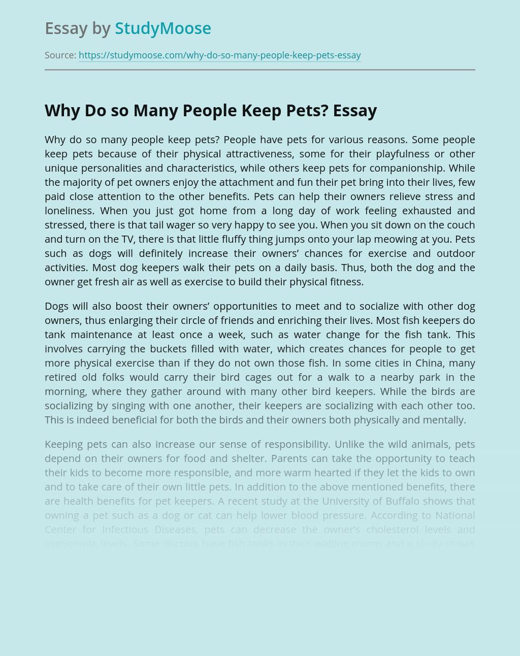 Why Do so Many People Keep Pets?