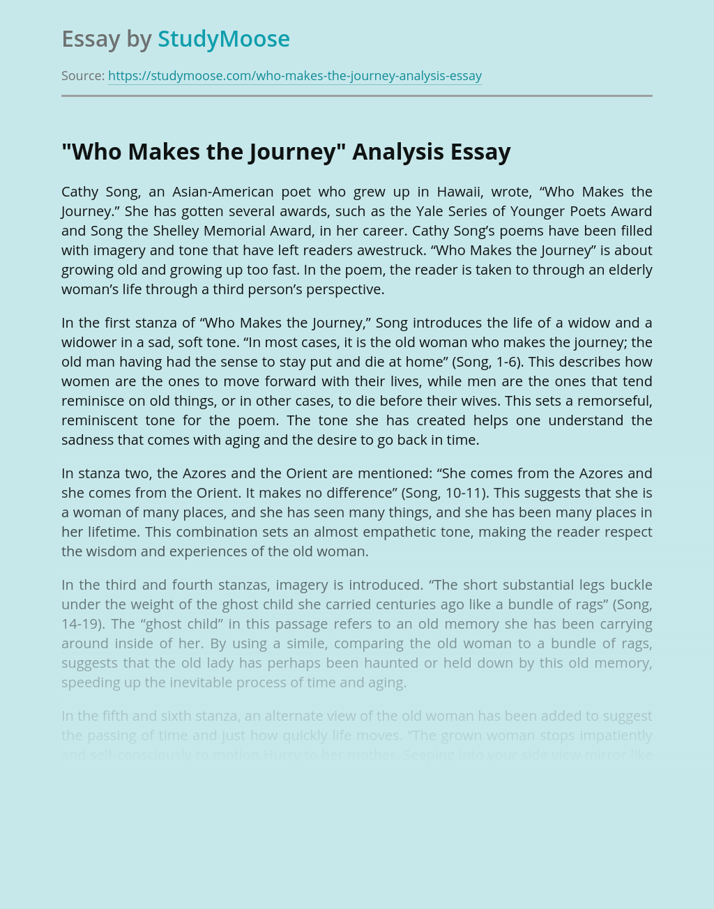 Who Makes the Journey Analysis?