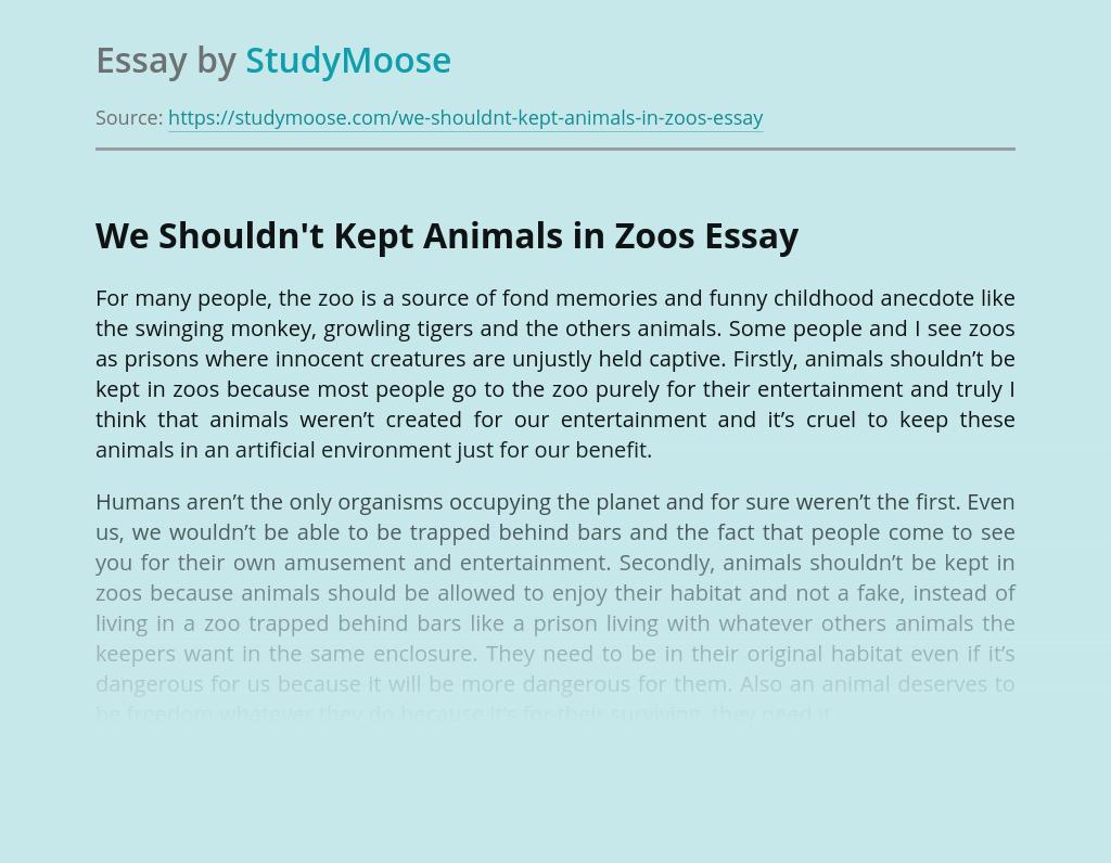 We Shouldn't Kept Animals in Zoos