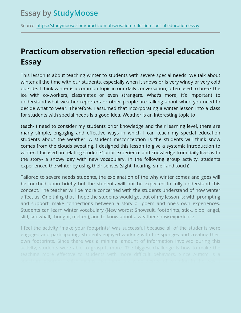 Practicum observation reflection -special education
