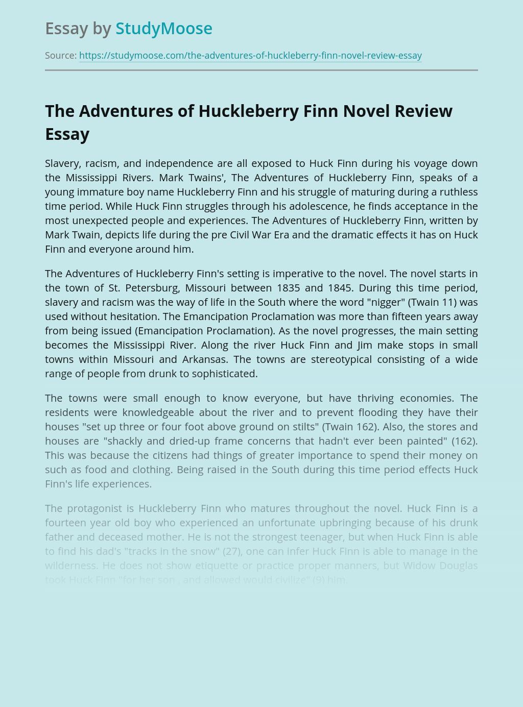 The Adventures of Huckleberry Finn Novel Review