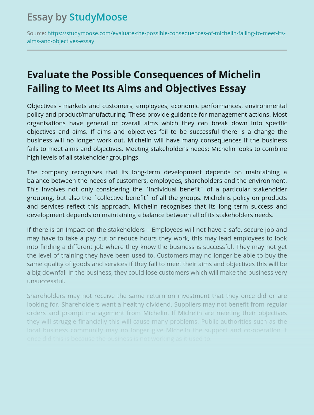 Evaluate the Possible Consequences of Michelin Failing to Meet Its Aims and Objectives