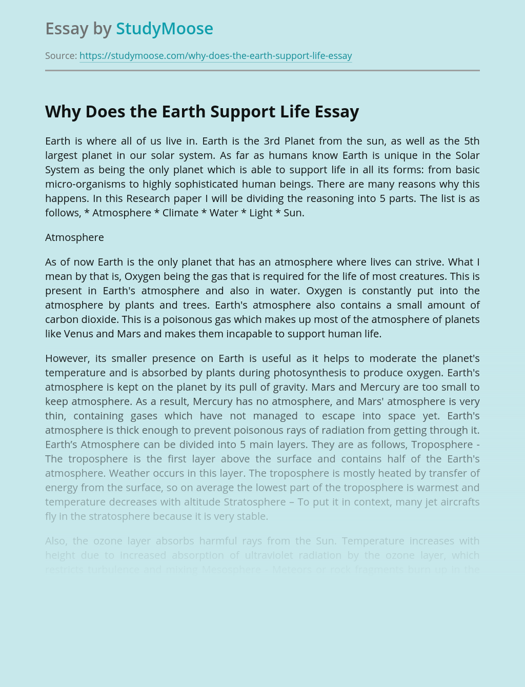 Essay on earth is a unique planet sample painting company business plan