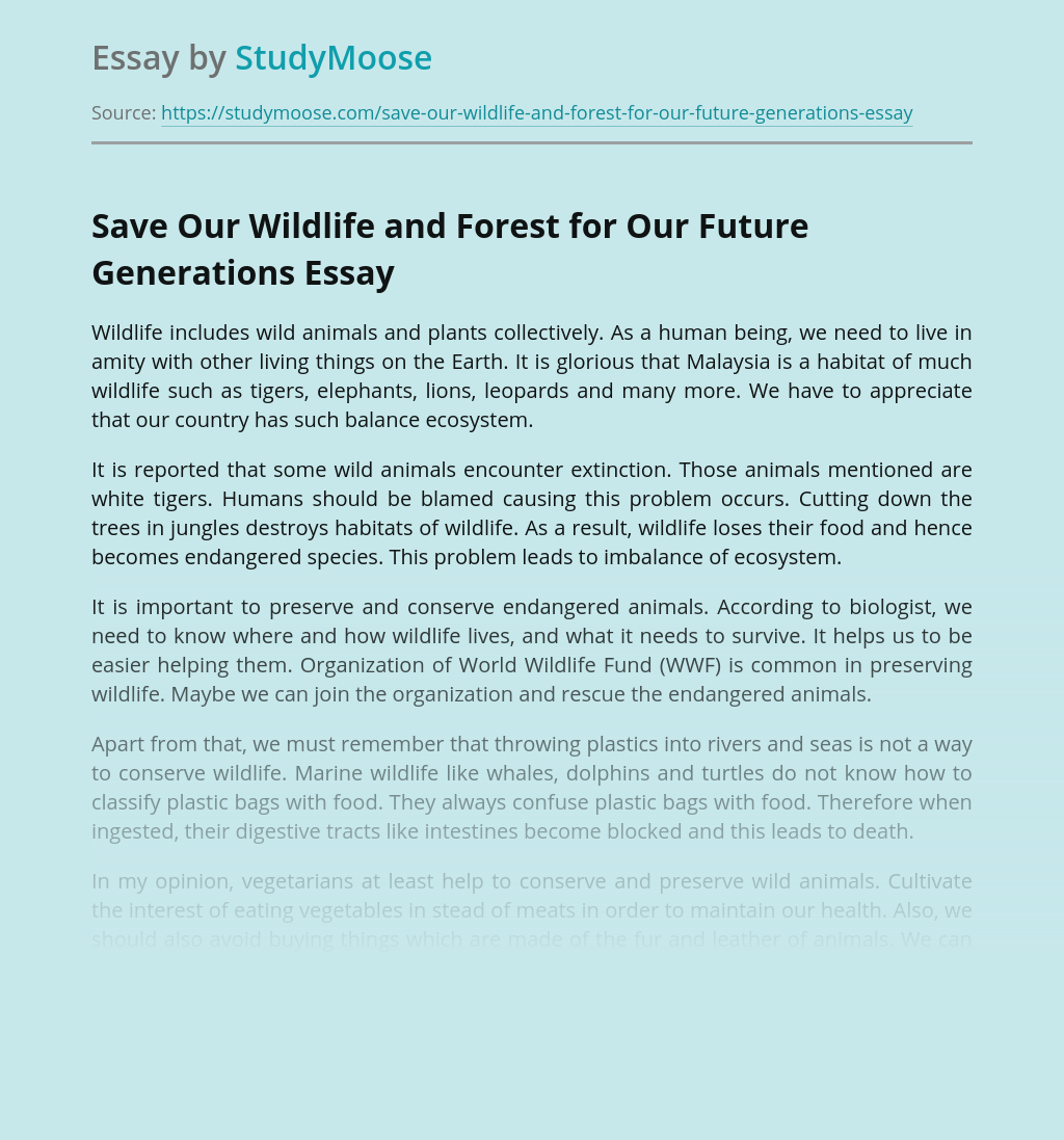 Save Our Wildlife and Forest for Our Future Generations