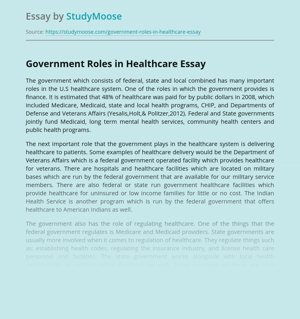 Government Roles in Healthcare