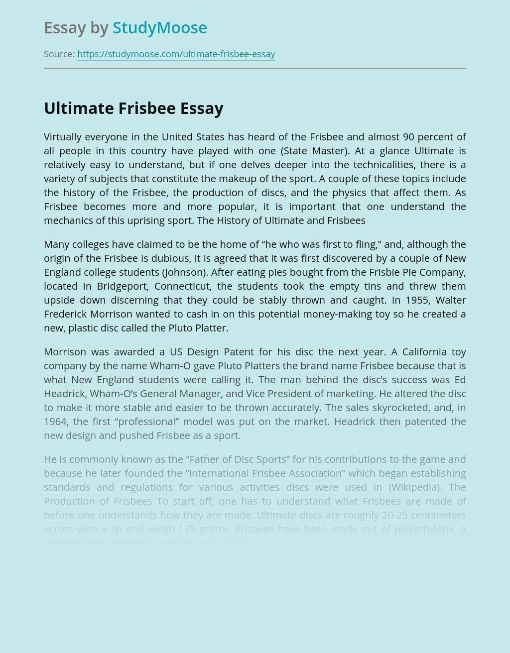 Descriptive essays describing person