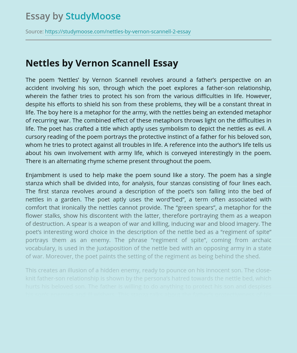 Analysis of the Vernon Scannell's Poem Nettles