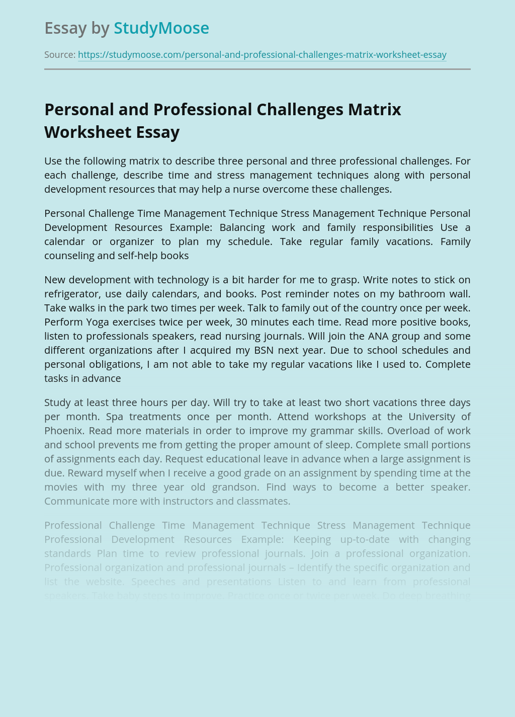 Personal and Professional Challenges Matrix Worksheet