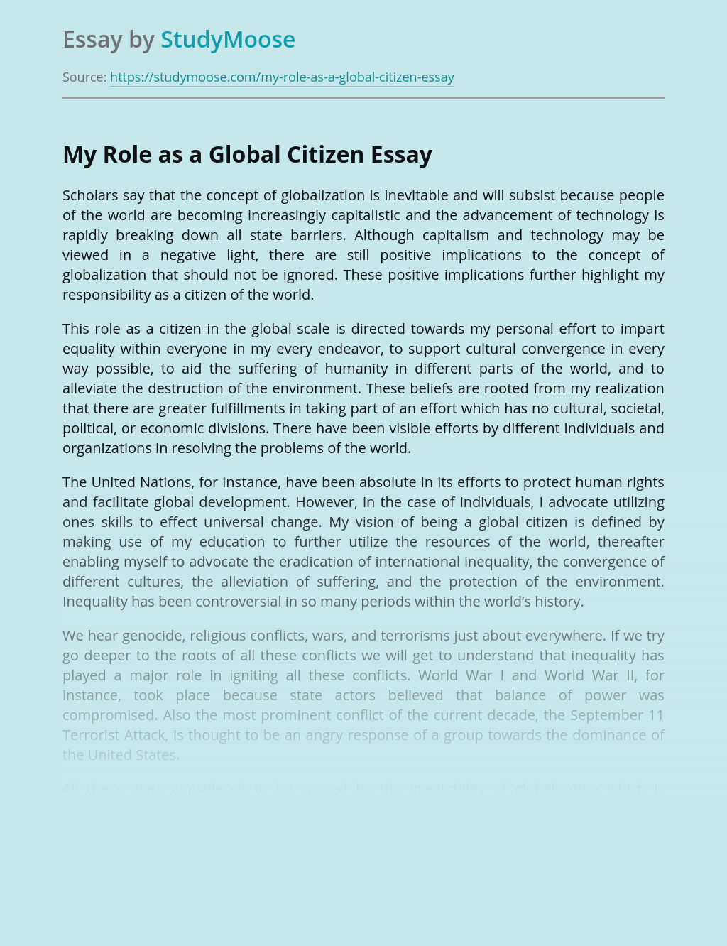 My Roles and Responsibilities as a Global Citizen