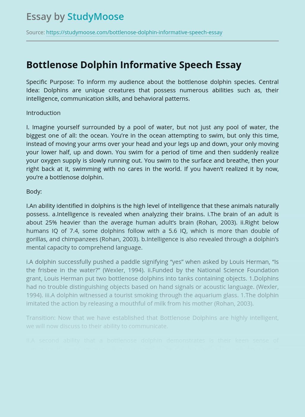 Bottlenose Dolphin Informative Speech