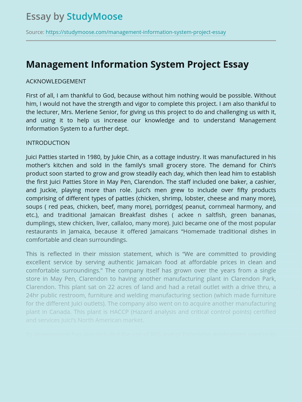 Management Information System Project