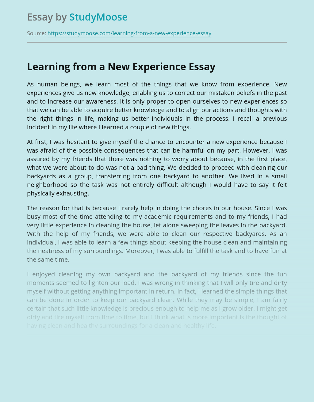 Essay on a experience esl biography ghostwriting services