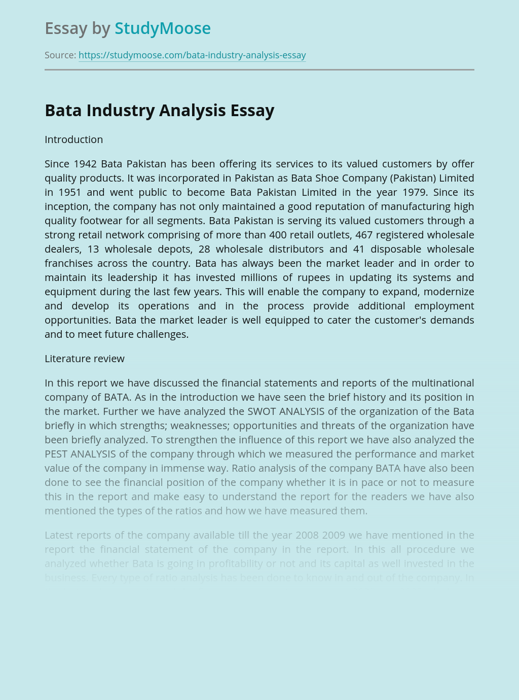Bata Industry Analysis