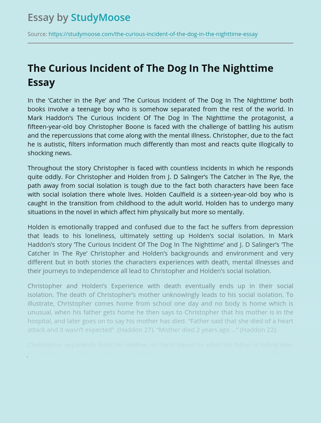 The Curious Incident of The Dog In The Nighttime: Protagonist Analysis