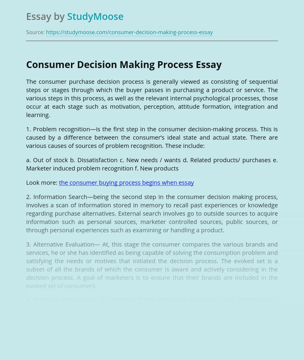 Buyer Decision Process Essay - Words | Bartleby