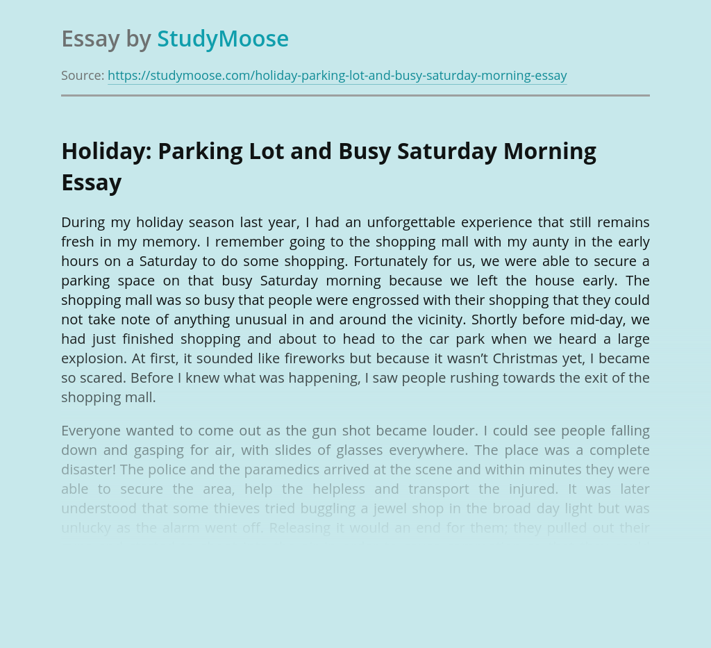 Holiday: Parking Lot and Busy Saturday Morning