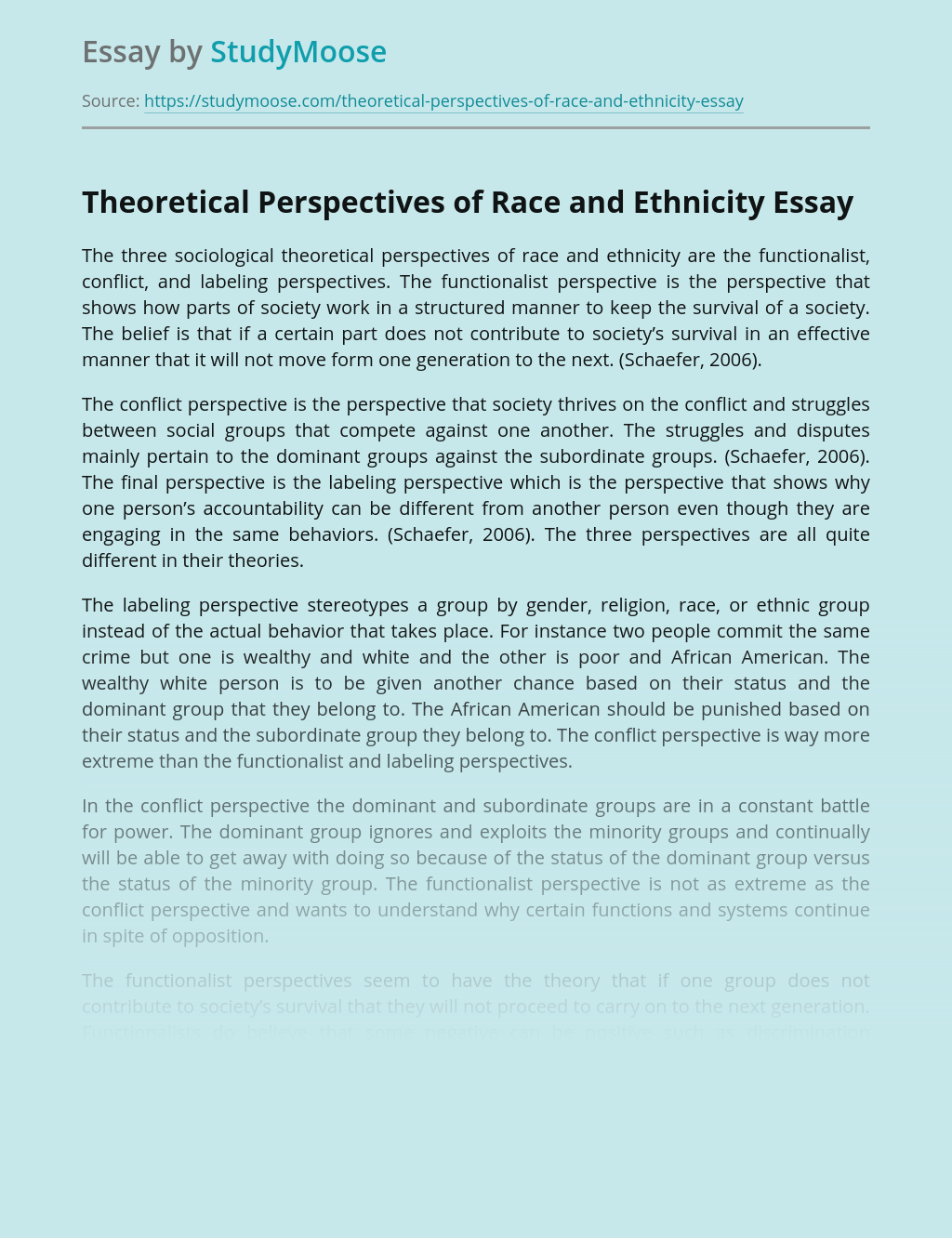 Theoretical Perspectives of Race and Ethnicity