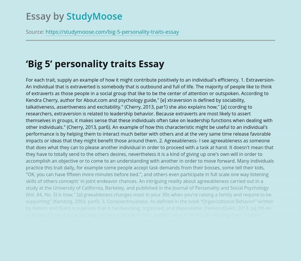 'Big 5' personality traits