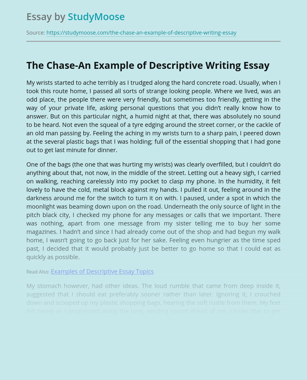The Chase-An Example of Descriptive Writing