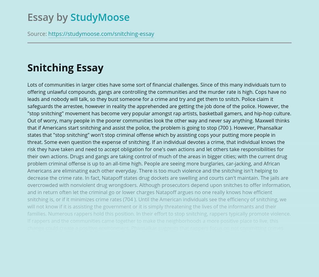 Nursing titles for essays
