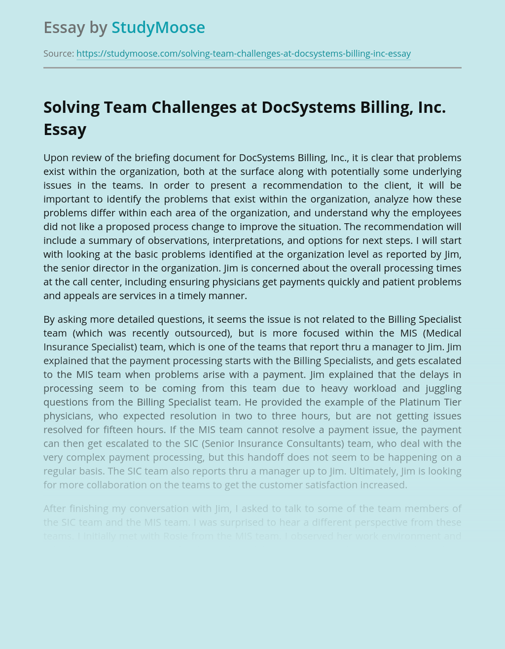 Solving Team Challenges at DocSystems Billing, Inc.