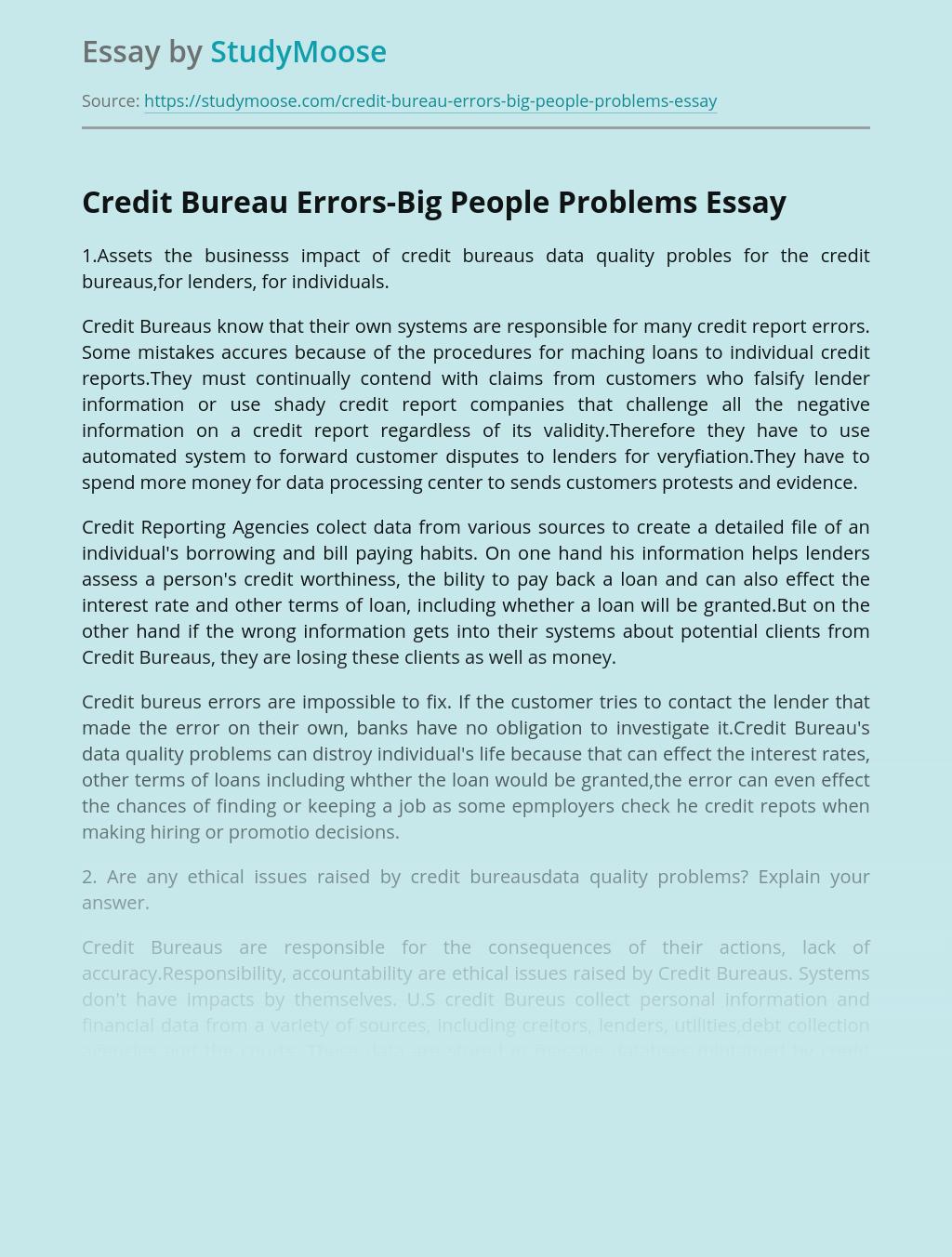 Credit Bureau Errors-Big People Problems